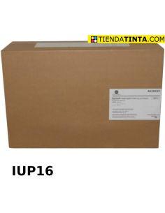 Tambor Konica Minolta A63X03V NEGRO (60000 Pag) IUP16